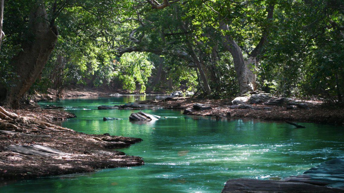 Milieuvriendelijker op vakantie? 3 tips